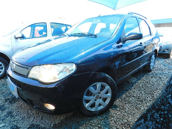 FIAT PALIO WEEKEND ELX 1.4 8v(Flex)